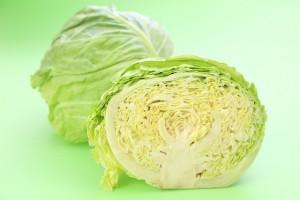 キャベツ白菜レタス